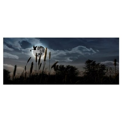 Stork with its young one flying over moon Poster