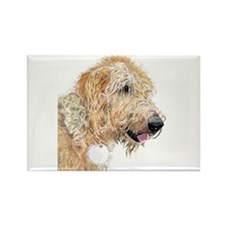 Cream Labradoodle 4 Rectangle Magnet
