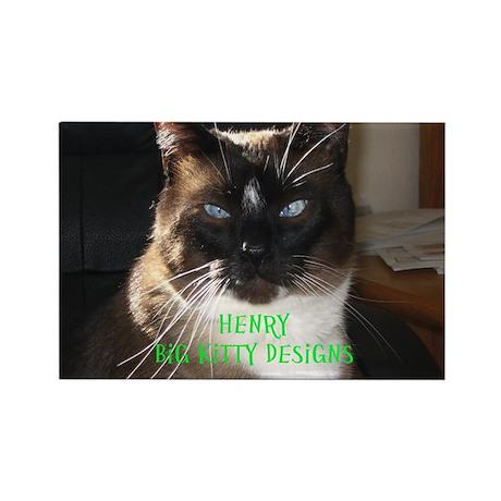 Henry the big kitty! (Green print)