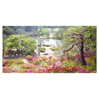 Trees and plants in a garden, Rikugien Garden, Tok Poster