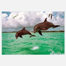 Two Bottlenose Dolphins Leaping In Sea