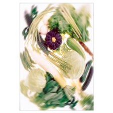 Vegetables, Blurred Motion