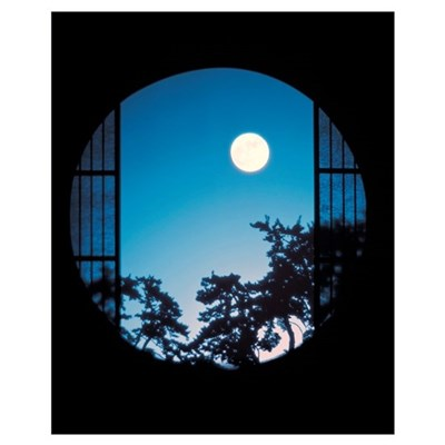 View of Full Moon in Sky Poster