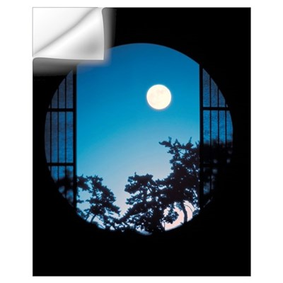 View of Full Moon in Sky Wall Decal