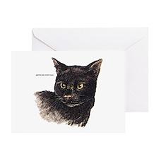 American Shorthair Cat Greeting Card