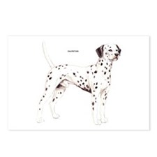 Dalmatian Dog Postcards (Package of 8)