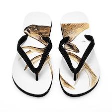 Elk Animal Flip Flops