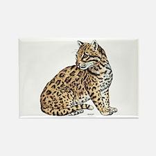 Ocelot Wild Cat Rectangle Magnet (100 pack)