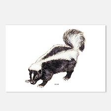Skunk Animal Postcards (Package of 8)