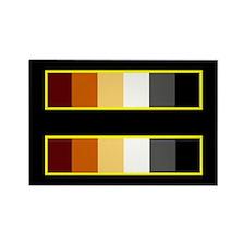 Equality Bear Black Rectangle Magnet (10 pack)
