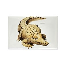Crocodile Animal Rectangle Magnet