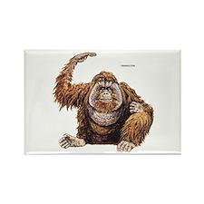 Orangutan Ape Rectangle Magnet