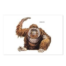 Orangutan Ape Postcards (Package of 8)