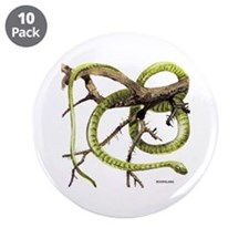"""Boomslang Snake 3.5"""" Button (10 pack)"""