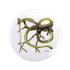"Boomslang Snake 3.5"" Button (100 pack)"