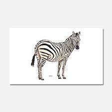 Zebra Animal Car Magnet 20 x 12