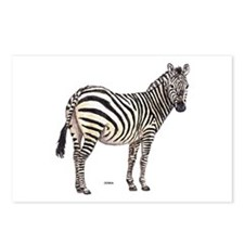Zebra Animal Postcards (Package of 8)