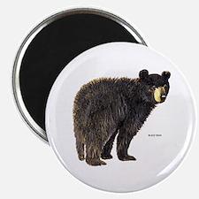 """Black Bear 2.25"""" Magnet (100 pack)"""