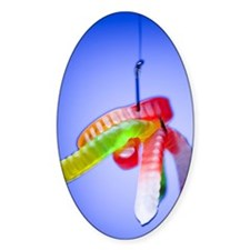 Close-up of gummy worms hanging by  Decal