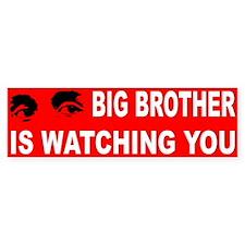 BIG BROTHER... Bumper Bumper Sticker