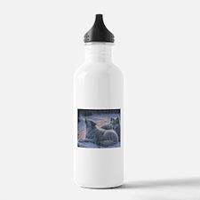 Snowy Water Bottle