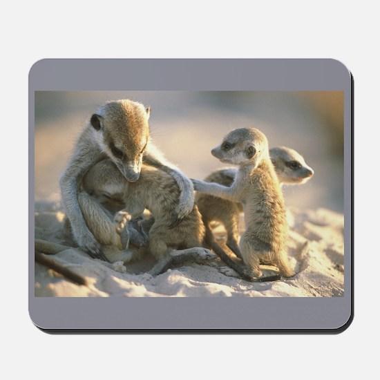 """Meerkat Cuddles"" Mousepad"