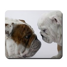 Two English Bulldogs face to face in stud Mousepad