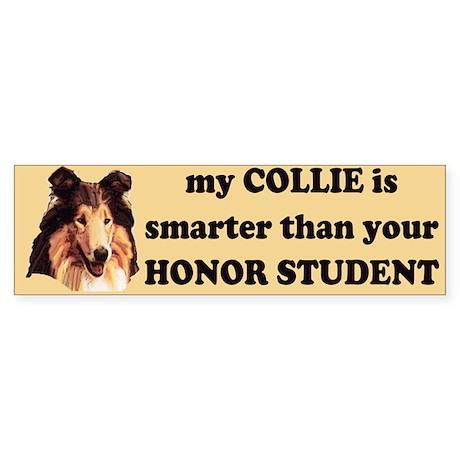 smart collie Bumper Sticker