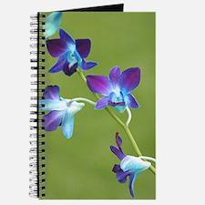 Unique Beautiful flower photography Journal
