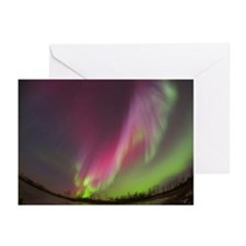 Northern Lights Greeting Cards (Pk of 20)