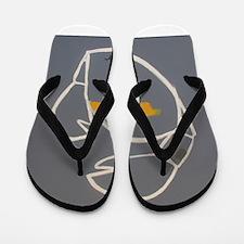 Cancer Flip Flops