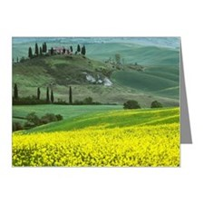 the 'Belvedere' in Tuscany ( Note Cards (Pk of 20)