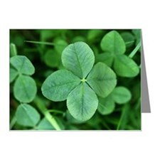 Four-leaf clover, close-up Note Cards (Pk of 10)