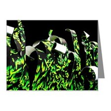 Photograph of grass curled a Note Cards (Pk of 10)