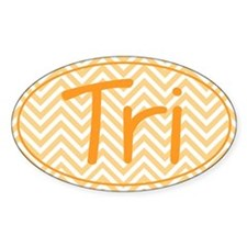 Triathlon Orange Chevron Decal