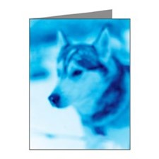 A Siberian Husky. Note Cards (Pk of 20)