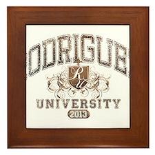 Rodriguez Last Name University Class of 2013 Frame