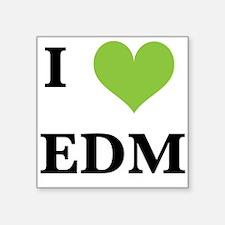 I heart EDM Sticker