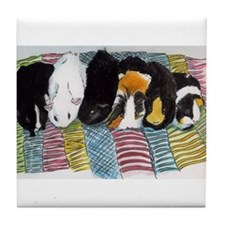 Guinea Pigs on a Quilt Coaster!