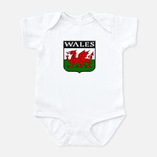 Wales Coat of Arms Onesie