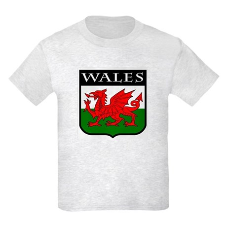 Wales Coat of Arms Kids Light T-Shirt