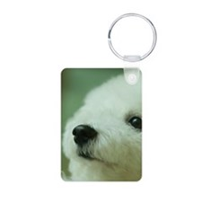 Close-up of a Bichon Frise Keychains