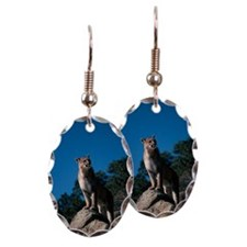 Cougar standing on rocky ledge Earring