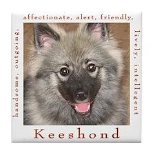 Cute Keeshound dog breed Tile Coaster
