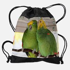02 february - amazons.jpg Drawstring Bag