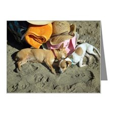 Dogs sleeping on beach Note Cards (Pk of 20)