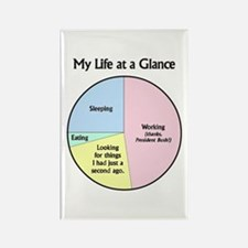 My Life at a Glance Rectangle Magnet