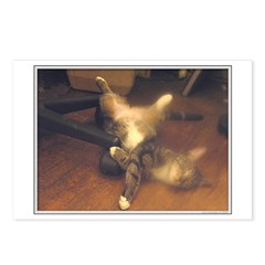 Soft Kitty Porn Postcards (Package of 8)