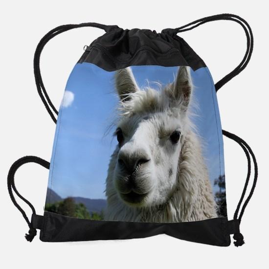 3-alice.jpg Drawstring Bag