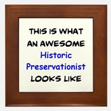 awesome historic preservationist Framed Tile